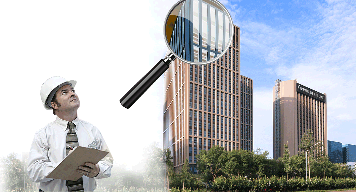 Building Inspection Murray Frankel